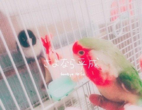 平成から令和へ (3).jpg